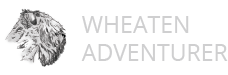 Wheaten-Adventurer